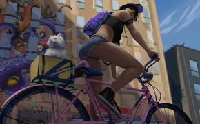 Picture bike, graffiti, shorts, sneakers, headphones, athlete, backpack, baseball cap, bottom view, white cat, city street, …