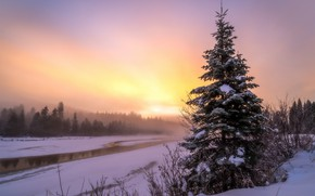 Picture winter, sunset, fog, river