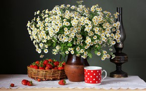 Picture flowers, berries, chamomile, strawberry, still life, flowers, still life, camomile, strawbery
