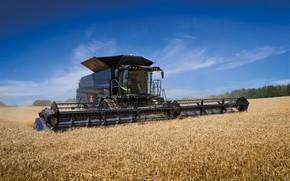 Picture Field, Wheat, 2018, Massey Ferguson, Harvester, Massey Ferguson Ideal 9T