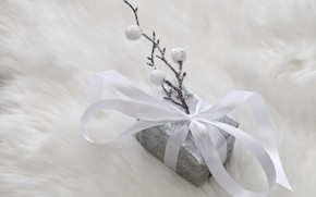 Picture winter, white, sprig, background, holiday, box, gift, silver, Christmas, New year, fur, silver, bow, Christmas …