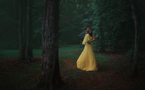Picture summer, girl, Park, the evening, dress, book, Alex Benetel