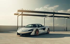 Picture McLaren, White, Supercar, 570S, Velos