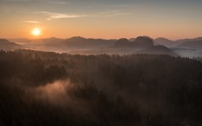 Picture forest, the sky, the sun, rays, light, mountains, fog, dawn, hills, view, height, morning, ate, …
