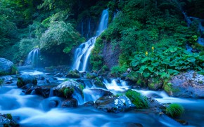 Picture summer, leaves, stones, vegetation, waterfall, stream, cascade, blue tones