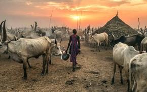 Picture Against the Sun, Terekeka, South Sudan