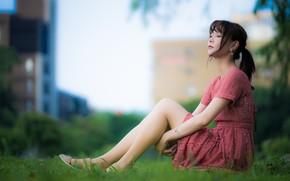 Picture girl, legs, Asian, cutie, bokeh, dress