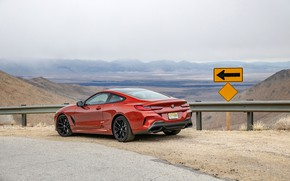 Picture coupe, BMW, the fence, roadside, 2018, 8-Series, 2019, dark orange, M850i xDrive, Eight, G15