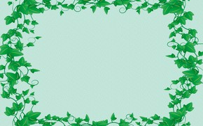 Picture postcard, ivy, template, blank
