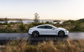 Picture grass, Porsche, side, Turbo S, 2020, Taycan