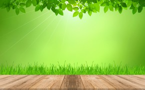 Picture grass, leaves, rays, light, green, Board