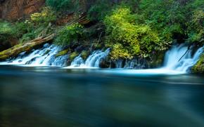 Picture river, vegetation, Oregon, waterfalls, cascade, Oregon, Река Метолиус, Metolius River