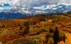 Picture autumn, forest, mountains, the slopes, snowy peaks