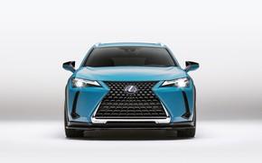 Picture Lexus, 2018, crossover, Lexus UX, 250h, Customized Concept