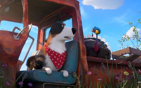 Picture dog, Turkey, The secret life of Pets 2, The Secret Life of Pets 2