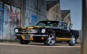 Picture Mustang, Ford, Car, Ford Mustang, Muscle car, Shelby GT 350 H Replica