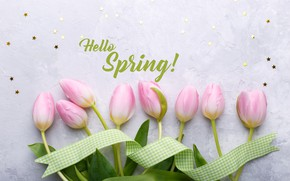 Picture flowers, bouquet, tape, tulips, pink, fresh, pink, flowers, tulips, spring