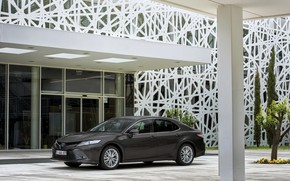 Picture the building, Parking, Toyota, sedan, Hybrid, Camry, 2019