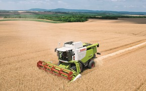 Picture field, harvester, Claas Lexion