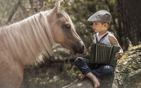 Picture horse, boy, accordion