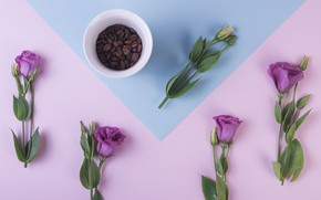 Picture purple, flowers, background, coffee, grain, Cup, flowers, cup, purple, beans, coffee, eustoma, eustoma