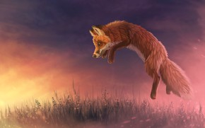 Picture sunset, nature, jump, Fox, by CreeperMan0508