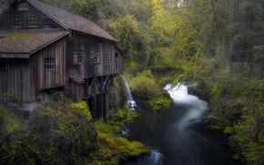 Picture nature, river, mill