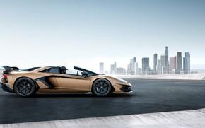 Picture machine, the sky, the city, building, Lamborghini, spoiler, sports car, drives, roadster, Aventador, SVJ