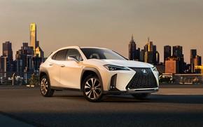 Picture concept, Lexus, lexus us