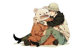 Picture bear, guy, One Piece