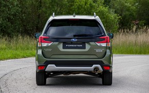 Picture Subaru, back, crossover, feed, Forester, 2019
