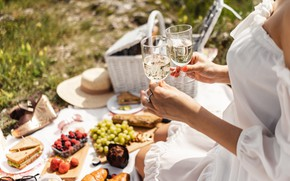 Picture summer, girl, wine, food, glasses, picnic