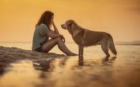 Picture girl, dog, girl, dog, Alexander Marks