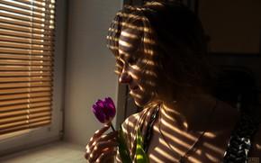 Picture flower, girl, lighting, window, Sergei Timashev