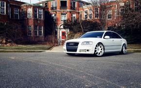 Picture Audi, Car, White