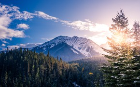 Picture winter, the sky, the sun, clouds, snow, trees, sunset, mountains, nature, rocks, Canada, Banff