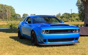 Picture Dodge, Challenger, 2018, SRT, Demon