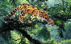 Picture pose, tree, thickets, foliage, figure, picture, jungle, art, painting, ocelot, Simon Combes