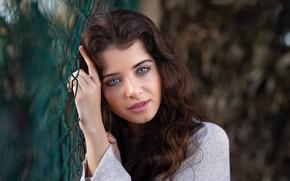 Picture girl, mesh, portrait, makeup, brunette, curls, David Mas