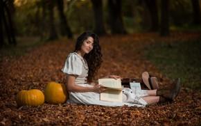 Picture autumn, look, leaves, girl, pose, Park, pumpkin, book, Robert Scapec