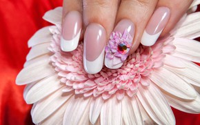 Picture white, flower, macro, red, background, fingers, decoration, nails, bokeh, manicure, Gerber