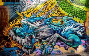 Picture wall, graffiti, dragon, The city