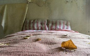Picture sheet, bed, naturalism