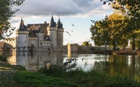 Picture France, castle, birds, Sully sur Loire, pond