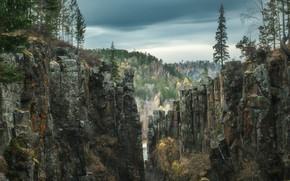 Picture landscape, nature, river, rocks, canyon, taiga, forest, Rev Alex, Alex Revs, Irkutsk oblast