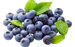 Picture berries, blueberries, leaves