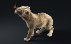 Picture Cub, Знакомство с миром, Львёнок и бабочка