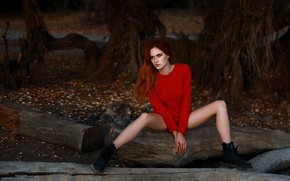 Picture autumn, girl, pose, feet, shoes, red, log, redhead, sweater, Angelina, Denis Lankin