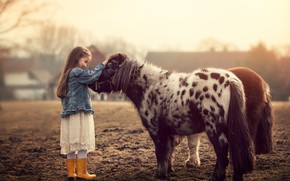 Picture nature, girl, pony