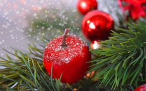 Picture winter, balls, branches, holiday, Apple, Christmas, New year, needles, Christmas decorations, Christmas decorations, новогодние декорации